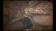 首輪を着けられ調教しながら穴を突き上げられる痴女